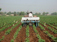 Mapping Soil Fertility to Boost Pakistan's Agricultural Production