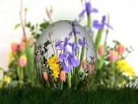 Spring and Spring Festivals