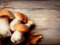 Top 6 Health Benefits of Mushrooms