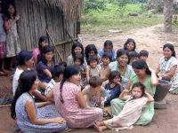 On average, Tsimane women have nine children. Credit: Michael Gurven