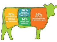Eat less meat and save the environment