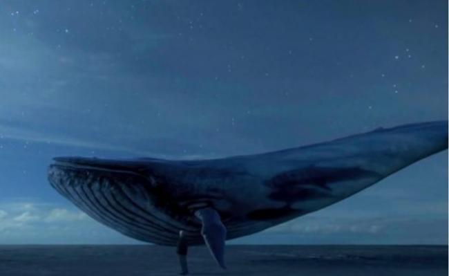 """The mystery of the killer """"Blue Whale"""" game"""